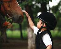 Girl petting horse Stock Photo