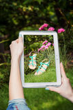 Girl photographed shoes online sale Royalty Free Stock Photography