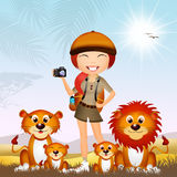 Girl photographing lions Stock Images