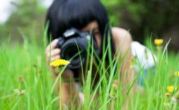 The girl photographs a dandelion Stock Image