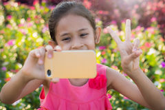 Girl photographs herself with a meadow of wildflowers Royalty Free Stock Photo