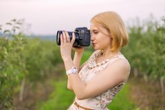 Girl photographs Royalty Free Stock Image