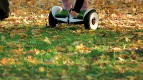 Girl pick up fallen oak leaves riding electrical gyroscooter. Close up. Green grass covered with yellow leaves stock video footage
