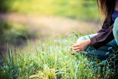 Girl picked the wild flowers. Evening sunlight. Stock Photography