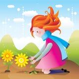 Girl picking flower  Royalty Free Stock Image