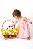 Girl picking flower petals. Young girl pulling petal off of flowers Stock Images