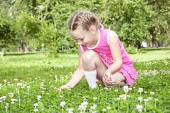 Girl picking flowers. In the summeer park Stock Photo