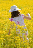 Girl Picking Flowers. Little Girl Walking in a Field Picking Flowers Stock Images