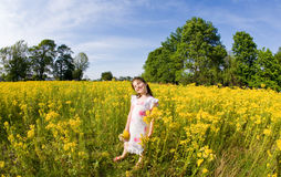 Girl Picking Flowers. Little Girl Walking in a Field Picking Flowers Stock Photography