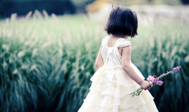 Girl picking flowers royalty free stock photography