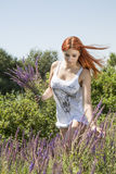 Girl picking flowers. Beautiful girl in a field picking flowers Royalty Free Stock Photography