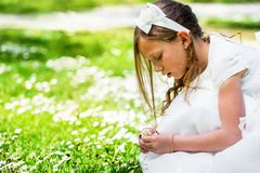 Girl picking flowers. Stock Photos