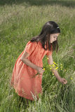 Girl Picking Flowers In Field. Happy young girl picking flowers in field Royalty Free Stock Photo