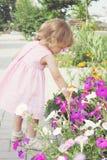 Girl picking flowers. Little girl picking flowers in the flower bed Stock Images