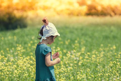 Girl picking flowers on the meadow. Little girl picking flowers on the flower meadow Stock Images