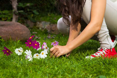 Girl picking flowers. Outdoor Royalty Free Stock Photography