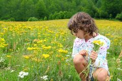Girl picking flowers in yellow spring meadow. Beautiful scenic in Pyrenees spain Royalty Free Stock Images