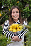 Girl picking lemons Royalty Free Stock Photography