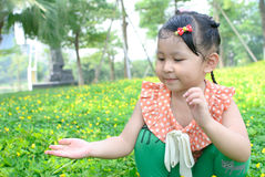 Girl picking the little flower Stock Images