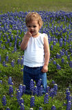 Girl Picking Nose. This little girl is picking her nose while standing in a field of Texas bluebonnets Stock Photos