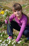 Girl picking spring flowers Royalty Free Stock Image