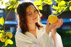 Girl picking up fresh fruit. Young woman picking up a fresh lemon from tree Royalty Free Stock Photos