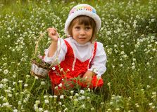 The girl picks flowers. The girl in wild flowers with a basket in hands stock photos