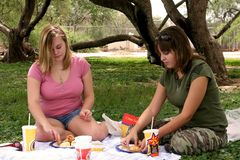Girl Picnic. Two girls sitting on a blanket in the park eating a chicken picnic lunch Royalty Free Stock Image
