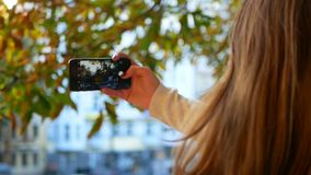 Girl pictures autumn park. A young girl takes pictures autumn park stock video footage