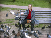 Girl and pigeons royalty free stock images