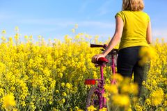 Girl with pink bike in the field of rape. Girl standing with pink bike in the field of yellow rape Royalty Free Stock Images