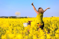 Girl with pink bike in the field of. Yellow standing with hands up in wonder stock photo