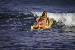 Girl in pink bikini surfing Stock Photos