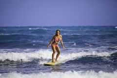 Girl in pink bikini surfing Stock Photography