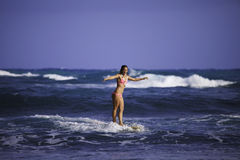 Girl in pink bikini surfing Stock Images