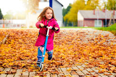 Girl in pink coat is riding scooter on maple leaves. Stock Images