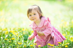 Girl in pink dress with dandelion on green grass. Royalty Free Stock Images