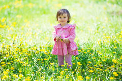 Girl in pink dress with dandelion on green grass. Royalty Free Stock Photos