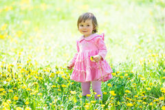 Girl in pink dress with dandelion on green grass. Royalty Free Stock Photography