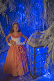 Girl in pink dress festive in the fairy forest. Stock Images