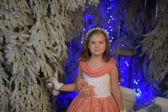 Girl in pink dress festive in the fairy forest. Girl in a smart pink dress festive in the fairy forest Stock Photos