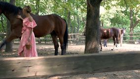 A girl in a pink dress and pink sunglasses feeds a horse from a wicker basket with apples in the paddock. 4k. 4k videoa girl in a