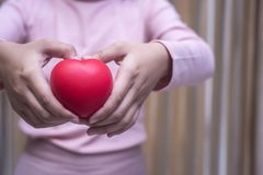 Girl in pink dress Holding a heart image stock photography