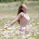 Girl in pink dress walks on meadow of chamomile Stock Image