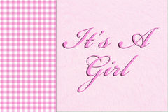 It is a Girl. Pink gingham on the side with a plush pink background with words Stock Photos