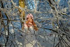 Girl in a pink hat drinking mulled wine in the winter in the forest. Royalty Free Stock Image