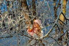 Girl in a pink hat drinking mulled wine in the winter in the forest. Royalty Free Stock Images