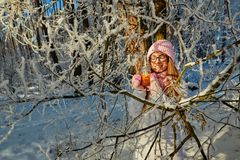Girl in a pink hat drinking mulled wine in the winter in the forest. Royalty Free Stock Photography