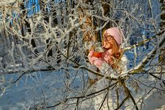 Girl in a pink hat drinking mulled wine in the winter in the forest. Stock Images