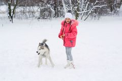 Little girl walking with a Siberian husky breed dog in the winte Royalty Free Stock Image